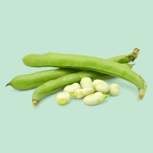 Fava | Frutta&verdura CibUbi